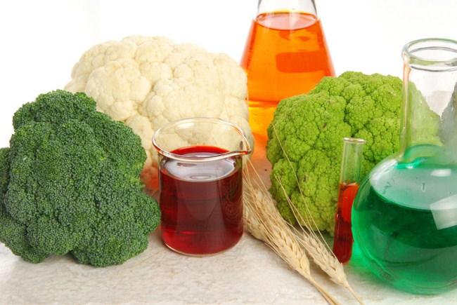 В России хотят разрешить ГМО