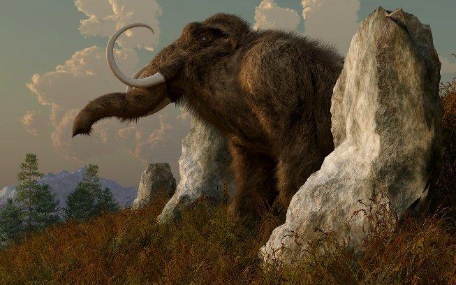Парк Ледникового периода: на Земле скоро вновь появятся мамонты