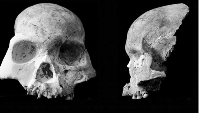 В Китае нашли останки совершенно нового вида человека