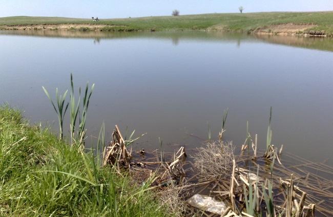 рыбалка в апреле в луганской области