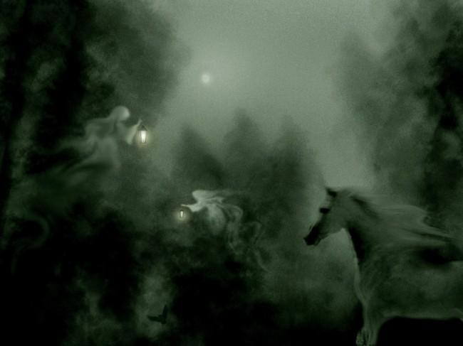 Блуждающие огни невозможно поймать, они быстро тускнеют и исчезают (4 фото)