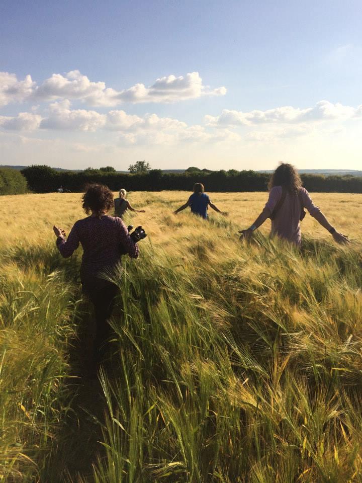 Англичанка 9 лет пытается разгадать тайну кругов на полях