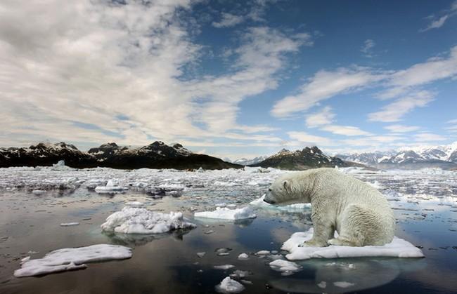 Температура на планете Земля продолжает неуклонно расти (5 фото)