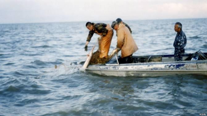 Чудовище Каспийского моря (2 фото)