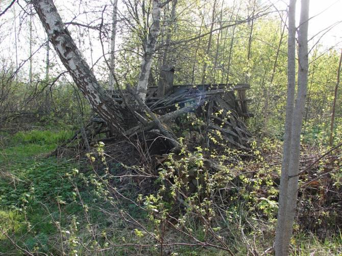 Легенда о Локнянской поляне-убийце (3 фото)
