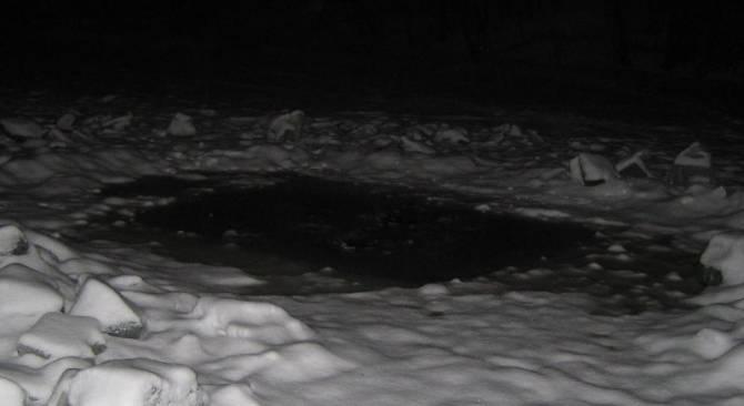 Призрак из черной полыньи