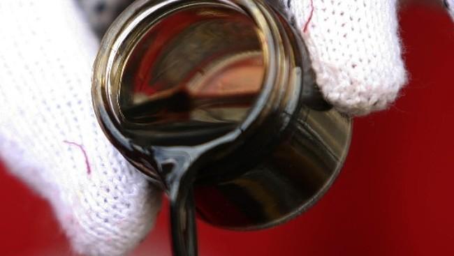 Версия: Все живое произошло из нефти?