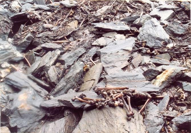 Роопкунд - индийское озеро Скелетов (8 фото)