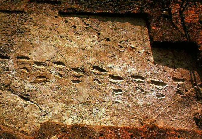 Кто оставил дорожку следов в Лаэтоли? (5 фото)