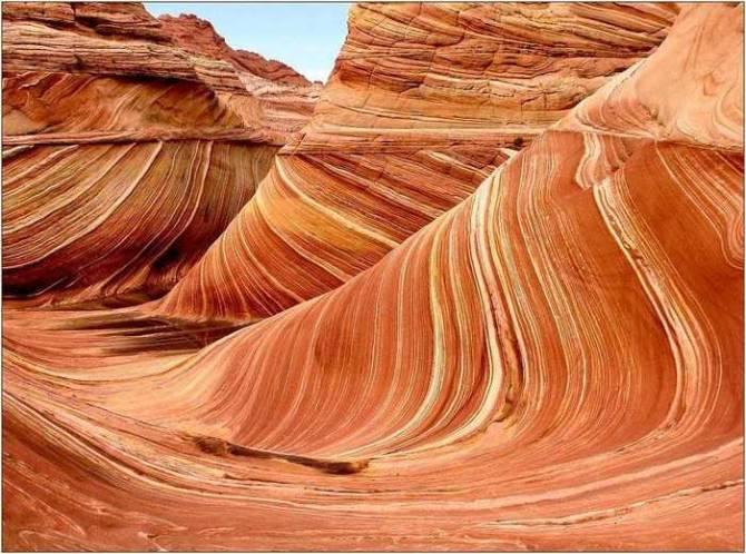 Семь удивительных творений природы (10 фото)