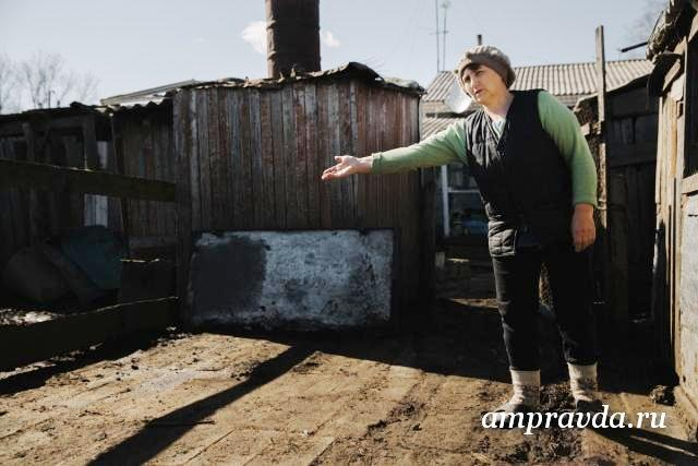 В селе Красный Яр обнаружили аномальную зону, в которой гибнут животные