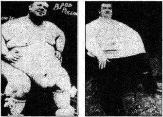 у толстяков не виден член