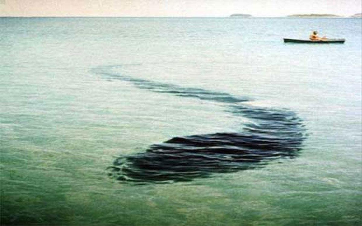 Картинки по запросу гигантский морской змей