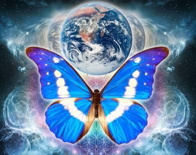 Чем опасен «эффект бабочки»? (4 фото)