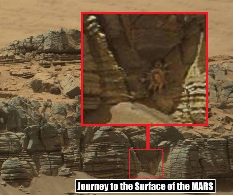 На фото с Марса нашли существо, похожее на огромного краба (2 фото)