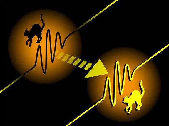 Ученые-физики телепортируют живой организм