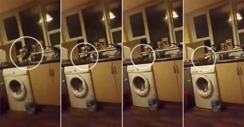 В ирландском Корке женщина засняла проделки полтергейста (2 фото + видео)