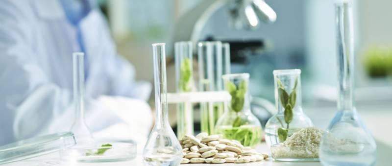 Разработчик FoodNet: через 20 лет люди будут выращивать еду в пробирках