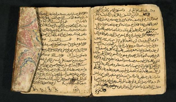 Могут ли древние книги стать источником медицинских открытий? (2 фото)