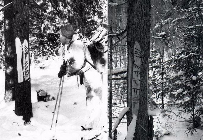 Гибель отряда Дятлова: «Они разграбили священное место» (5 фото)