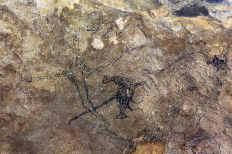 Гигантский орёл Хааста, нападающий на людей