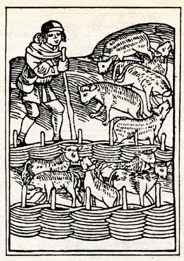 Пастух-колдун  (2 фото)
