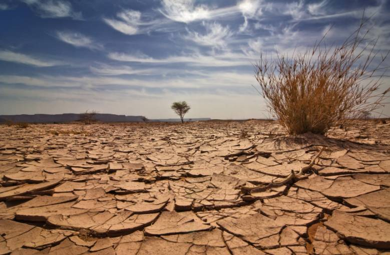 Водные ресурсы: мир на пороге новой катастрофы