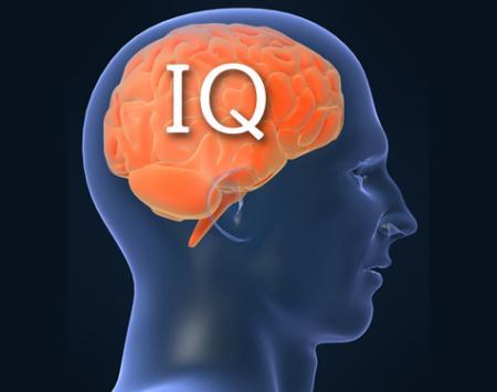 Уровень интеллекта: Факты и мифы (3 фото)