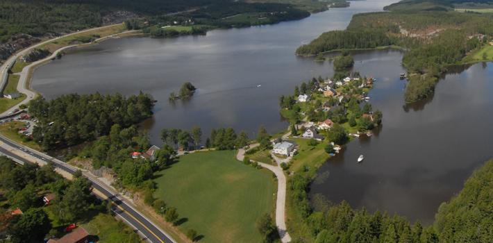 Монстр из норвежского озера Реммен (2 фото)