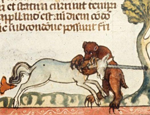Тайные шифры средневековых бестиариев  (5 фото)
