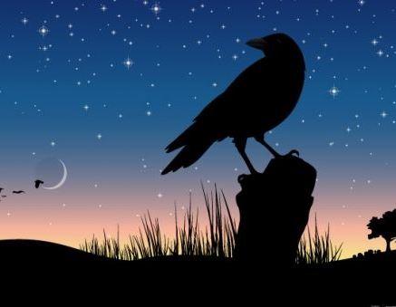 Вестники смерти: Животные и птицы (3 фото)