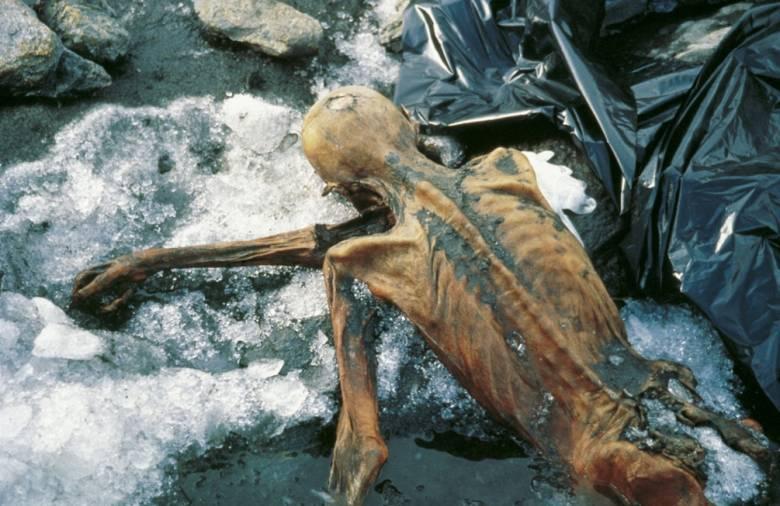 Проклятия для осквернителей могил усопших (5 фото)