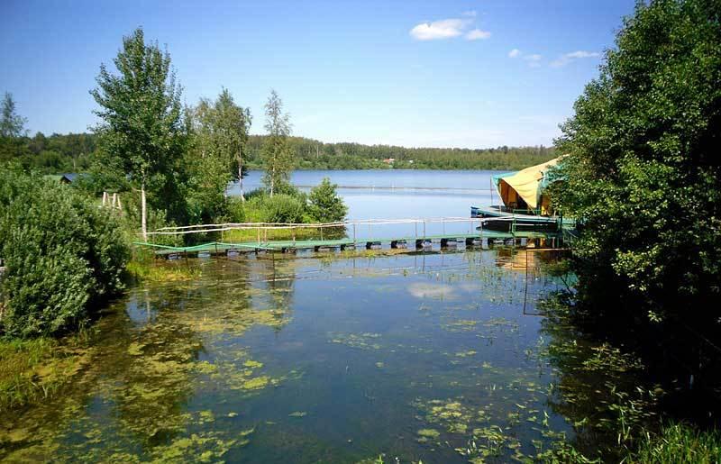 медвежьи озера рыбалка фото