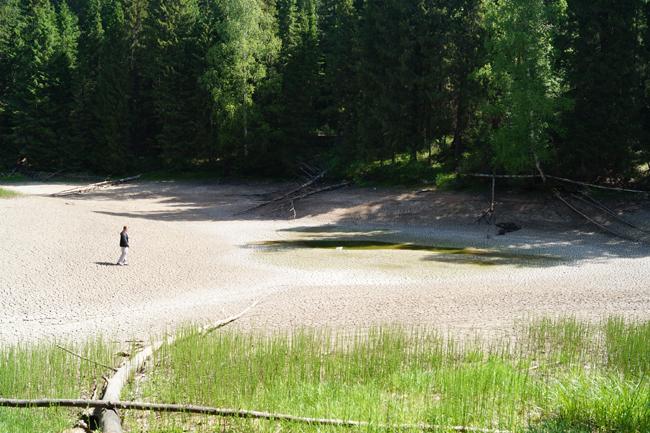 В Прикамье внезапно ушло под землю целое озеро (4 фото)