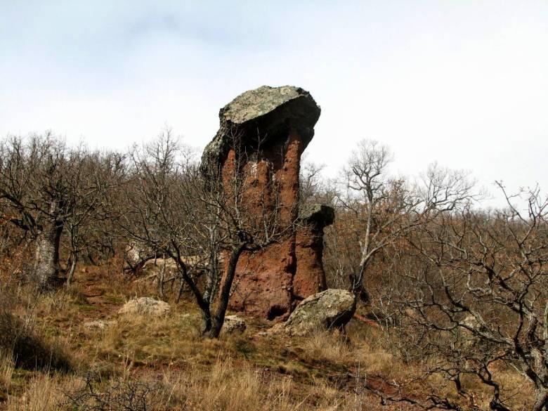 Уникальные каменные грибы (8 фото)
