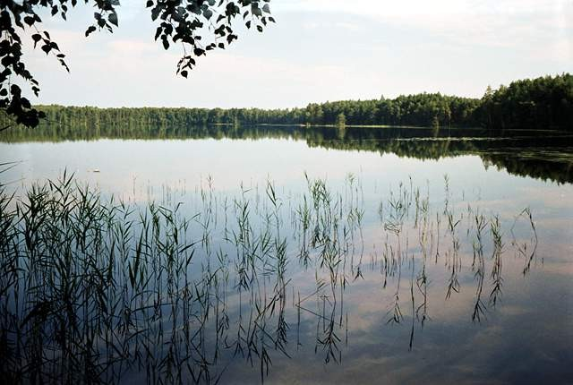 Озеро Малое Плотово: На нем регулярно появляется и пропадает таинственный остров (2 фото)
