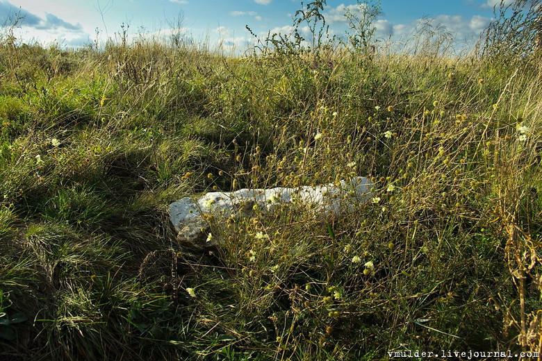 Каменный лабиринт под Воронежем (7 фото)