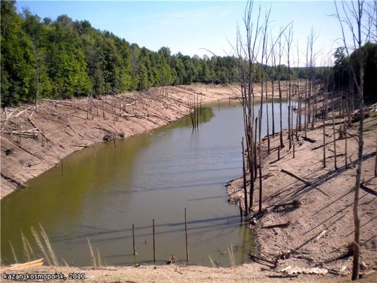 Озеро гиблых деревьев (2 фото)