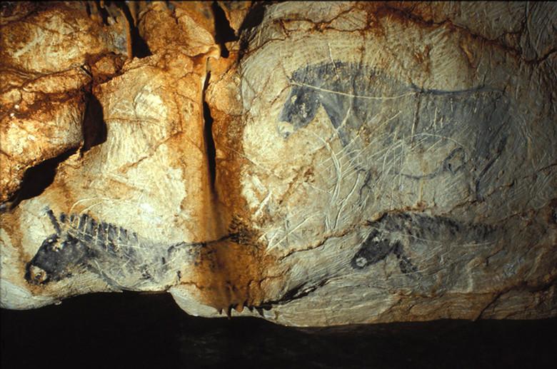 Удивительные рисунки пещеры Коске (12 фото)