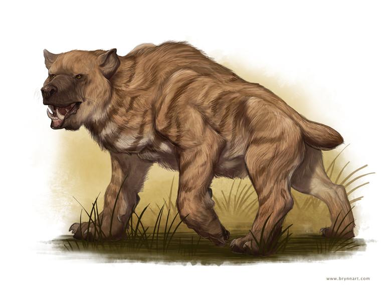 Африканский зверь чемосит - пожиратель мозгов (4 фото)