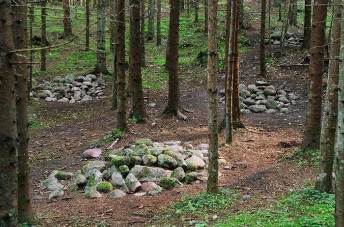 Тайны Покайнского леса (5 фото)