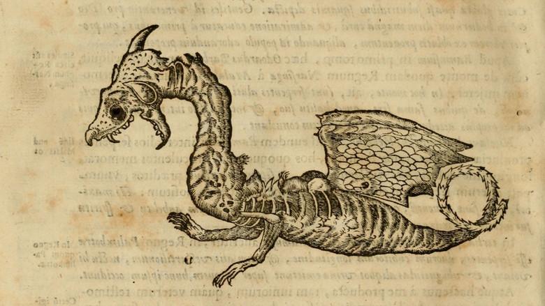 Разоблачения средневековых драконов (4 фото)