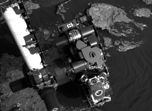 На Марсе нашли аномалию, похожую на живую ящерицу (3 фото)