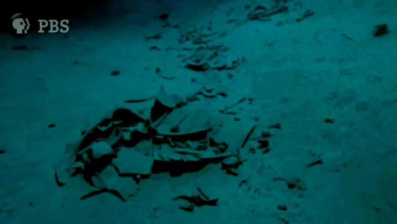 Загадка таинственного кладбища морских черепах у берегов Малайзии (3 фото + видео)