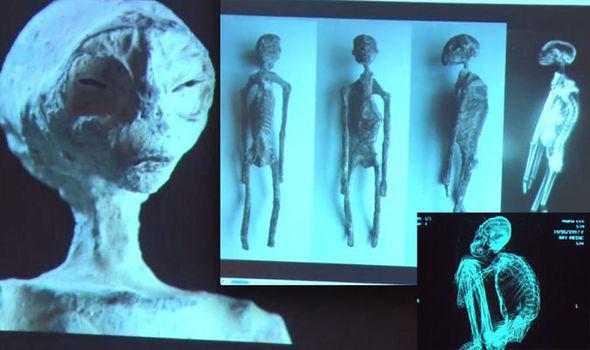 Пять мумий Наска, похожих на инопланетян: Реальность или подделка? (3 фото + видео)