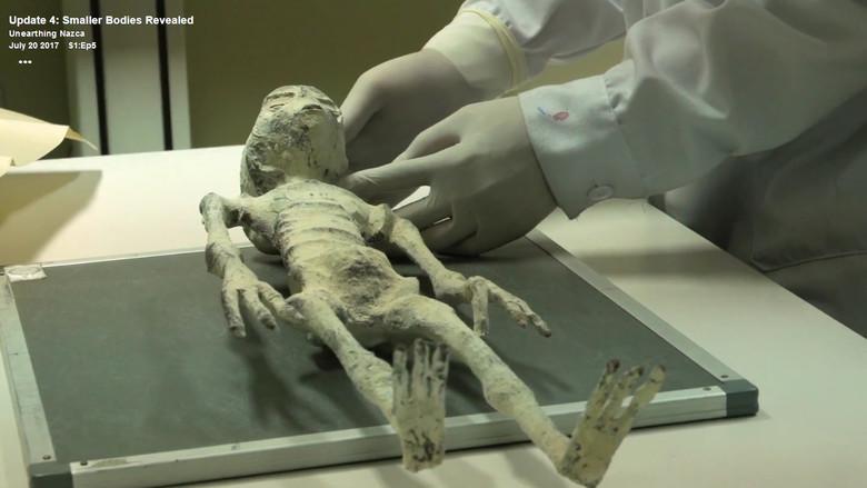 В Перу найдена мумия настоящего инопланетянина? S36565485