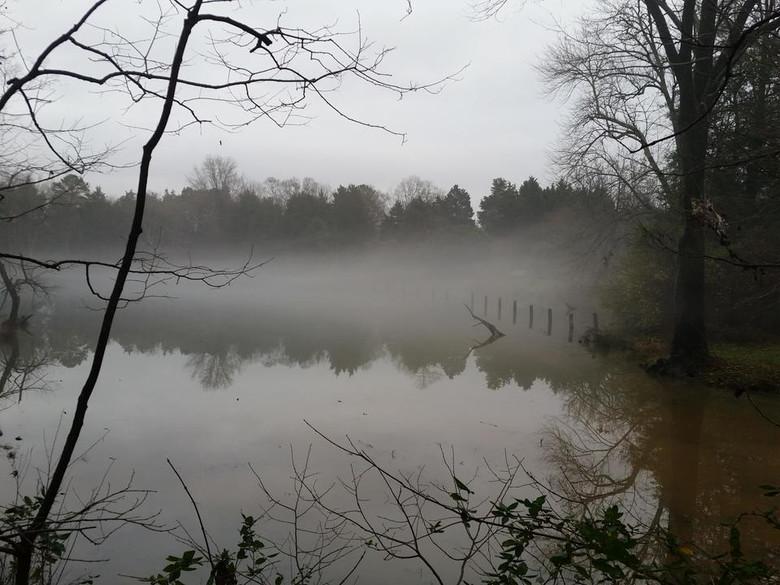 В американском искусственном озере Норман снова видели местную Несси (3 фото)