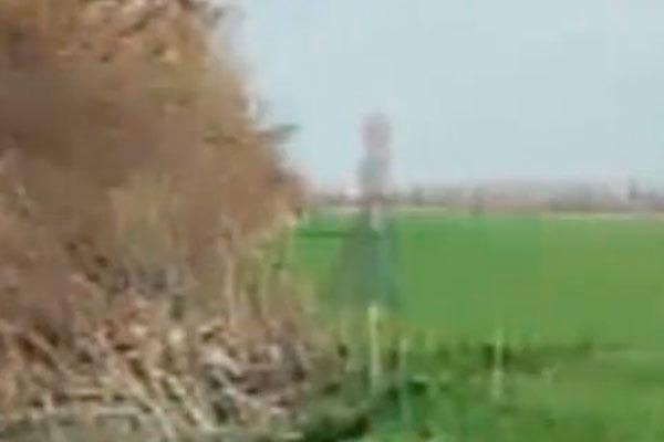 Где в Краснодаре можно встретить призрака (2 фото)