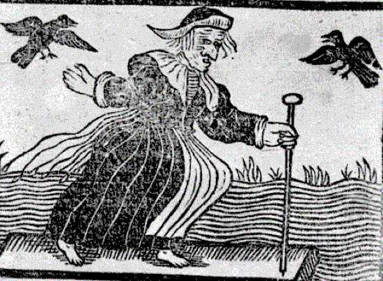Фамильяры - верные друзья ведьм и колдунов (7 фото)
