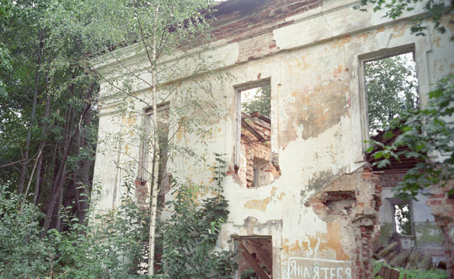 Черное зеркало князей Друцких-Соколинских (2 фото)